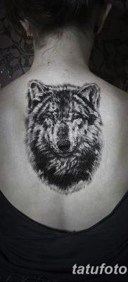 фото тату черный волк от 13.09.2017 №042 – black wolf tattoo – tatufoto.com