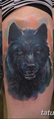 фото тату черный волк от 13.09.2017 №052 – black wolf tattoo – tatufoto.com