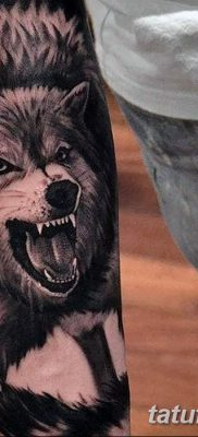 фото тату черный волк от 13.09.2017 №061 – black wolf tattoo – tatufoto.com