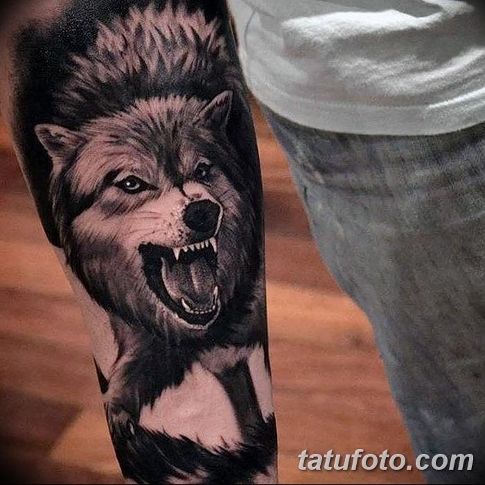 Татуировка волка на руке
