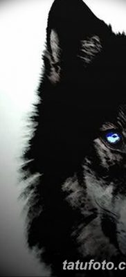 фото тату черный волк от 13.09.2017 №070 – black wolf tattoo – tatufoto.com