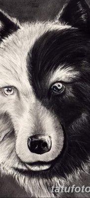 фото тату черный волк от 13.09.2017 №071 – black wolf tattoo – tatufoto.com