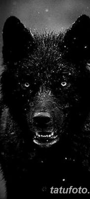 фото тату черный волк от 13.09.2017 №080 – black wolf tattoo – tatufoto.com