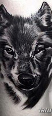 фото тату черный волк от 13.09.2017 №086 – black wolf tattoo – tatufoto.com