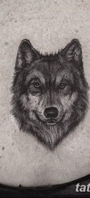 фото тату черный волк от 13.09.2017 №095 – black wolf tattoo – tatufoto.com