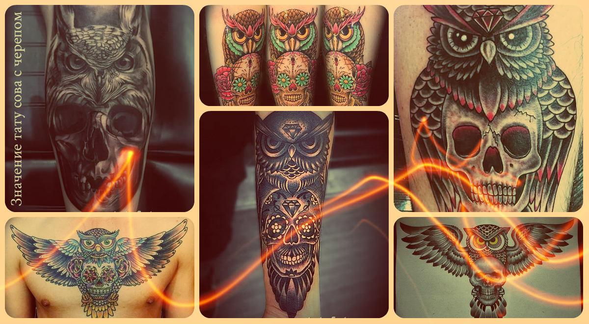 Значение тату сова с черепом - коллекция фото готовых татуировок - рисунки