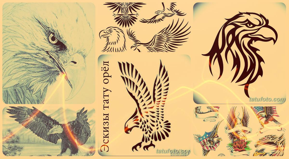 Эскизы тату орёл - варианты рисунков для татуировки с орлом