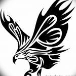 фото Эскизы тату орёл от 21.10.2017 №004 - Sketches of an eagle tattoo - tatufoto.com