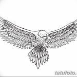 фото Эскизы тату орёл от 21.10.2017 №010 - Sketches of an eagle tattoo - tatufoto.com