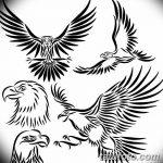 фото Эскизы тату орёл от 21.10.2017 №017 - Sketches of an eagle tattoo - tatufoto.com 234235234