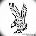 фото Эскизы тату орёл от 21.10.2017 №019 - Sketches of an eagle tattoo - tatufoto.com
