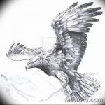 фото Эскизы тату орёл от 21.10.2017 №020 - Sketches of an eagle tattoo - tatufoto.com