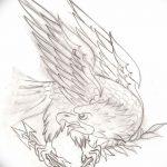 фото Эскизы тату орёл от 21.10.2017 №025 - Sketches of an eagle tattoo - tatufoto.com