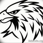 фото Эскизы тату орёл от 21.10.2017 №034 - Sketches of an eagle tattoo - tatufoto.com