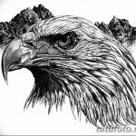 фото Эскизы тату орёл от 21.10.2017 №035 - Sketches of an eagle tattoo - tatufoto.com