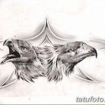 фото Эскизы тату орёл от 21.10.2017 №039 - Sketches of an eagle tattoo - tatufoto.com