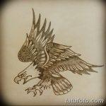 фото Эскизы тату орёл от 21.10.2017 №046 - Sketches of an eagle tattoo - tatufoto.com