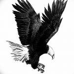 фото Эскизы тату орёл от 21.10.2017 №049 - Sketches of an eagle tattoo - tatufoto.com