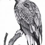 фото Эскизы тату орёл от 21.10.2017 №051 - Sketches of an eagle tattoo - tatufoto.com
