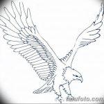 фото Эскизы тату орёл от 21.10.2017 №052 - Sketches of an eagle tattoo - tatufoto.com
