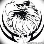фото Эскизы тату орёл от 21.10.2017 №057 - Sketches of an eagle tattoo - tatufoto.com