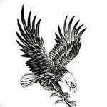 фото Эскизы тату орёл от 21.10.2017 №059 - Sketches of an eagle tattoo - tatufoto.com