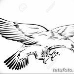 фото Эскизы тату орёл от 21.10.2017 №065 - Sketches of an eagle tattoo - tatufoto.com