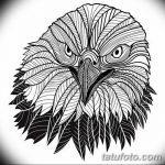 фото Эскизы тату орёл от 21.10.2017 №066 - Sketches of an eagle tattoo - tatufoto.com