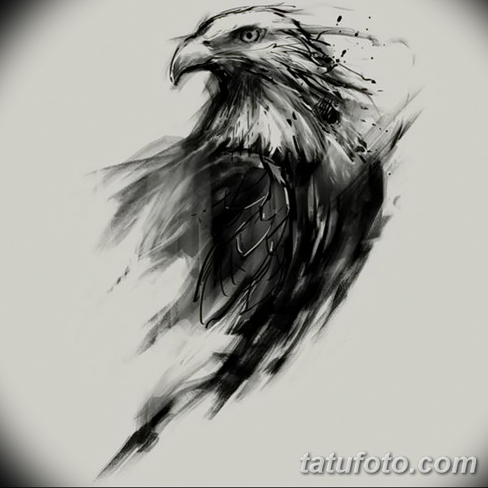 070 sketches of an eagle tattoo. Black Bedroom Furniture Sets. Home Design Ideas