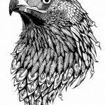 фото Эскизы тату орёл от 21.10.2017 №079 - Sketches of an eagle tattoo - tatufoto.com
