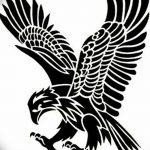 фото Эскизы тату орёл от 21.10.2017 №086 - Sketches of an eagle tattoo - tatufoto.com