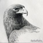 фото Эскизы тату орёл от 21.10.2017 №091 - Sketches of an eagle tattoo - tatufoto.com