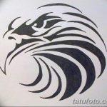 фото Эскизы тату орёл от 21.10.2017 №094 - Sketches of an eagle tattoo - tatufoto.com