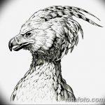 фото Эскизы тату орёл от 21.10.2017 №098 - Sketches of an eagle tattoo - tatufoto.com