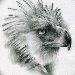 фото Эскизы тату орёл от 21.10.2017 №101 - Sketches of an eagle tattoo - tatufoto.com