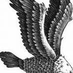 фото Эскизы тату орёл от 21.10.2017 №107 - Sketches of an eagle tattoo - tatufoto.com