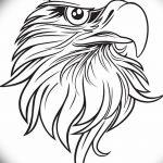 фото Эскизы тату орёл от 21.10.2017 №110 - Sketches of an eagle tattoo - tatufoto.com
