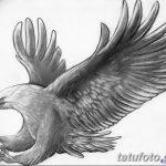 фото Эскизы тату орёл от 21.10.2017 №112 - Sketches of an eagle tattoo - tatufoto.com
