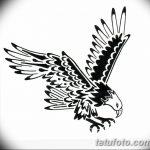 фото Эскизы тату орёл от 21.10.2017 №113 - Sketches of an eagle tattoo - tatufoto.com