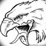 фото Эскизы тату орёл от 21.10.2017 №118 - Sketches of an eagle tattoo - tatufoto.com