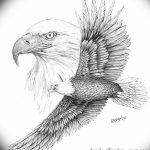 фото Эскизы тату орёл от 21.10.2017 №125 - Sketches of an eagle tattoo - tatufoto.com
