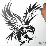 фото Эскизы тату орёл от 21.10.2017 №126 - Sketches of an eagle tattoo - tatufoto.com