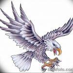 фото Эскизы тату орёл от 21.10.2017 №127 - Sketches of an eagle tattoo - tatufoto.com