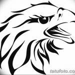 фото Эскизы тату орёл от 21.10.2017 №128 - Sketches of an eagle tattoo - tatufoto.com