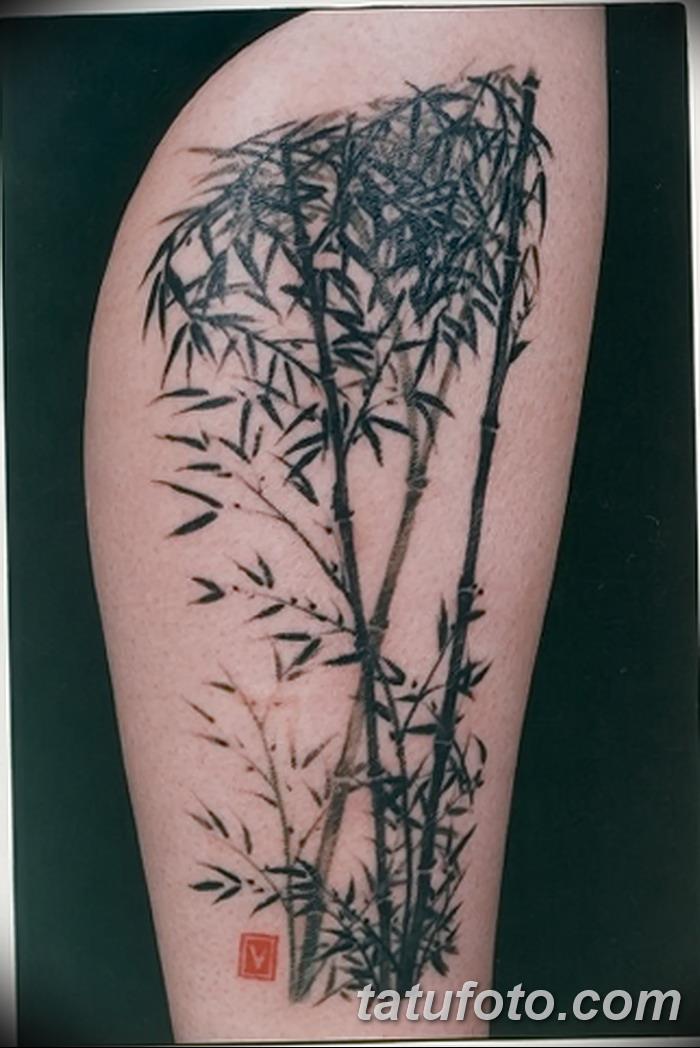 фото тату бамбук от 18.10.2017 №015 - tattoo bamboo - tatufoto.com