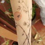 фото тату бамбук от 18.10.2017 №050 - tattoo bamboo - tatufoto.com