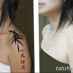 фото тату бамбук от 18.10.2017 №058 - tattoo bamboo - tatufoto.com
