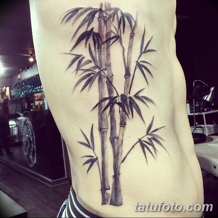 фото тату бамбук от 18.10.2017 №064 - tattoo bamboo - tatufoto.com