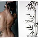 фото тату бамбук от 18.10.2017 №065 - tattoo bamboo - tatufoto.com