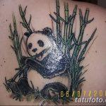 фото тату бамбук от 18.10.2017 №082 - tattoo bamboo - tatufoto.com